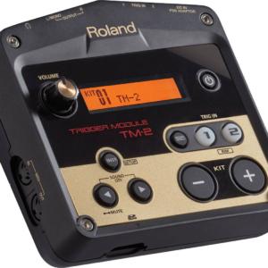 Ремонт ROLAND TM-2